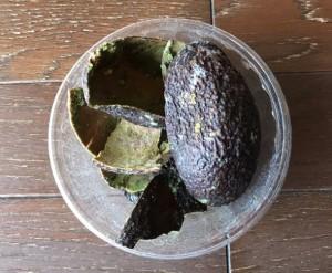 abokado kawa 21 3